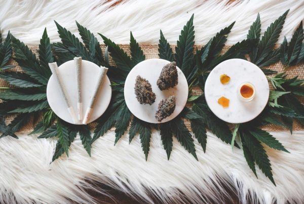 marijuana thanksgiving