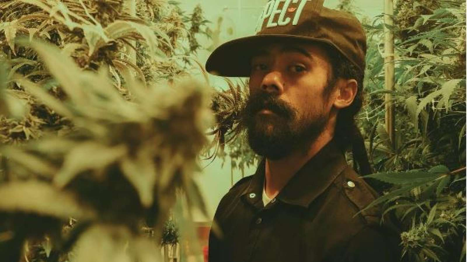 damian marley weed prison