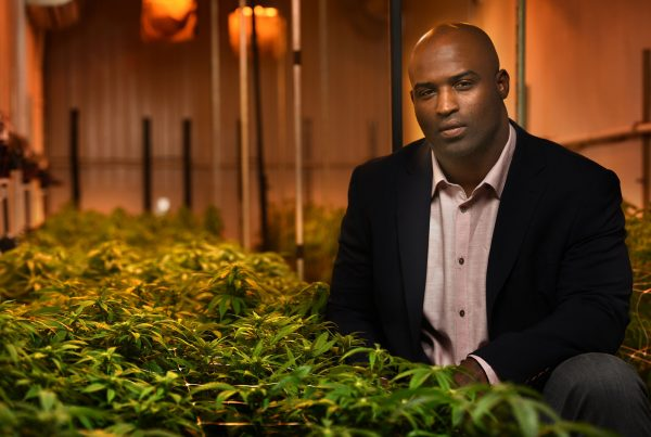 ricky williams marijuana